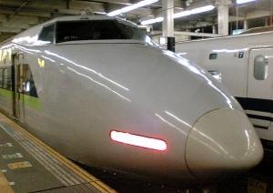 20110109hyaku.jpg
