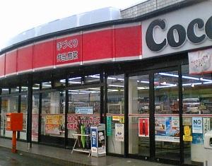 20110608cocostr.jpg