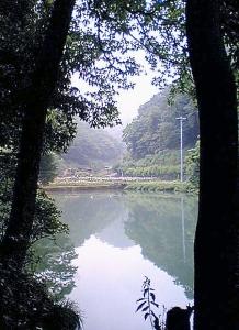 20110618enkei.jpg