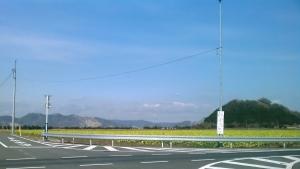 20120122nanohanabt.jpg