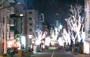 20130105kitanosakaminami.jpg