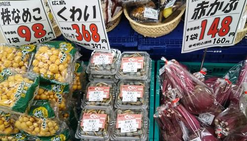 20150822kuwai.jpg