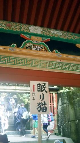 20151129nemurinuko.jpg